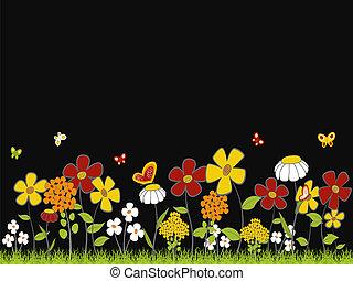 fleur, pré