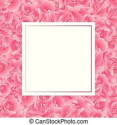 fleur rose, bannière, oeillet, carte