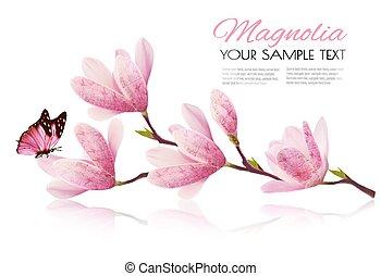 fleur rose, branche, fleur, magnolia, vecto, fond, butterfly.