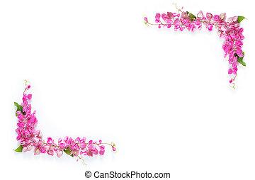 fleur rose, fond, coin, blanc, copie, frontière florale, cadre, espace
