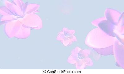 fleur rose, fond