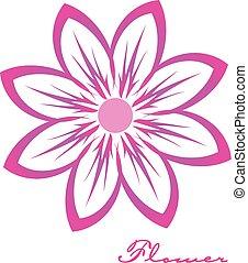fleur rose, image, logo, conception