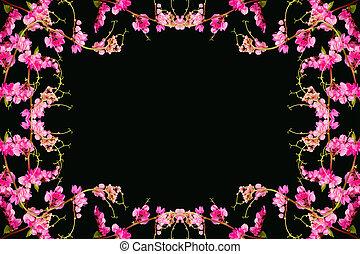 Rose Garden Fleur Mexicain Chaine Coral Love Liane Vigne