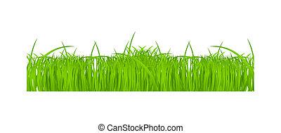 fleur, set., illustration, vecteur, frontières, herbe