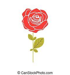 fleur, silhouette, coloré, pétales rose, blanc, frontière