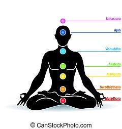 fleur, silhouette, lotus, image, -, chakras, vecteur, noir, noms, position, homme yoga