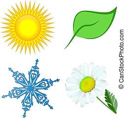 fleur soleil, feuille, neige