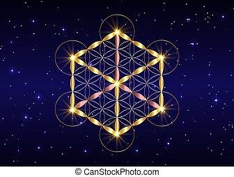 fleur, vecteur, religion, fond, alchimie, isolé, nuit, cube., or, sacré, symbole, bleu, metatrons, étoilé, géométrie, ciel, vie, spirituality.