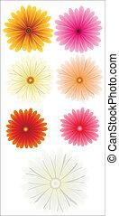 fleur, vectors