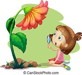 fleur, verre, tenue, sous, girl, magnifier