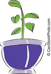fleurir pot, illustration, vecteur, fond, petit, blanc
