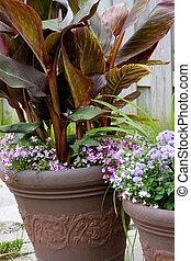fleurir pots, arrangment