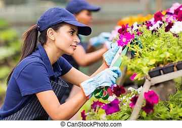 fleuriste, fleurs, femme, émondage