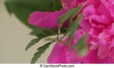 fleuristes, mariage, macro