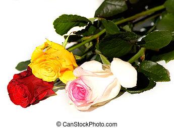 fleurs, 45