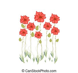 fleurs, aquarelle, rouges