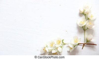 fleurs, armature bois, space., arrière-plan., blanc, copie