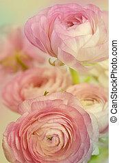 fleurs, art, design., mariage, vacances, carte