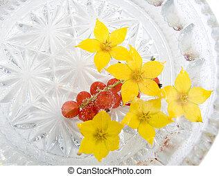 fleurs, baies