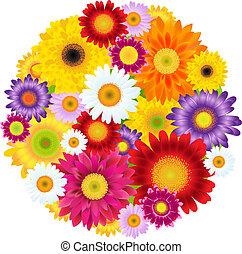 fleurs, balle, coloré, gerbers
