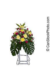 fleurs blanches, coloré, fond