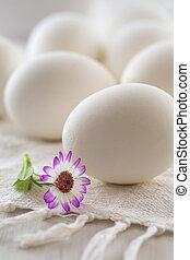 fleurs blanches, oeufs
