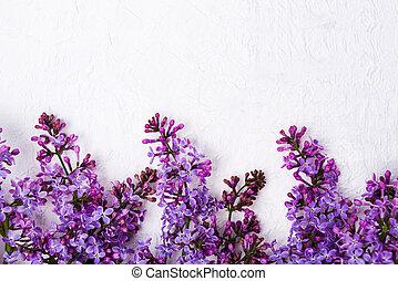 fleurs blanches, tissu, lilas, arrangement