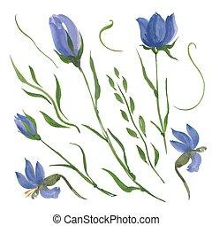 fleurs, bleu