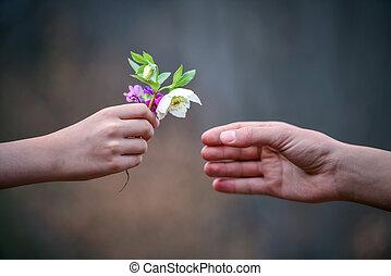 fleurs, cadeau