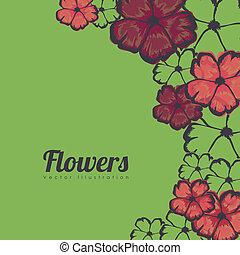 fleurs, cadre