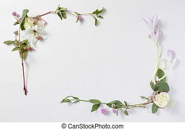 fleurs, cadre, dans, fond blanc, isolé