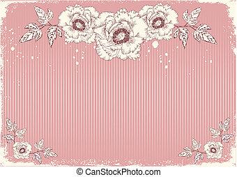 fleurs, carte postale, pivoines