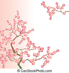 fleurs cerise