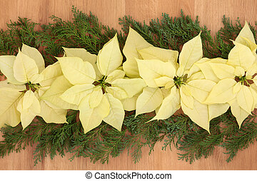fleurs, chêne, poinsettia