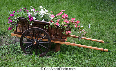 fleurs, chariot