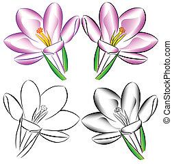 fleurs, clair, beau