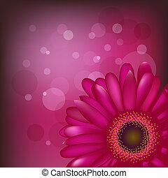 fleurs, clair