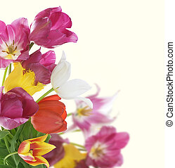 fleurs, conception, carte anniversaire, border.