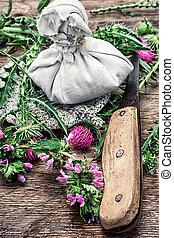 fleurs coupées, chardon, épineux