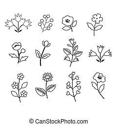 fleurs, décoratif, ensemble