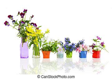 fleurs, dans, pots