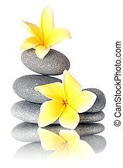 fleurs, empilé, jaune, pierres