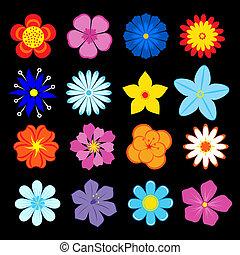 fleurs, ensemble, fleur, éléments