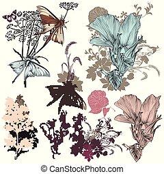 fleurs, ensemble, vecteur, conception, main, dessiné