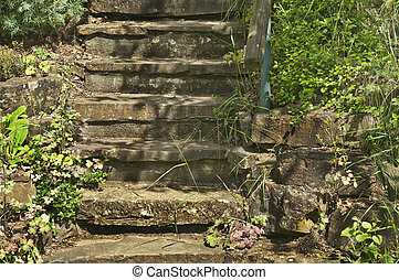 fleurs, escalier