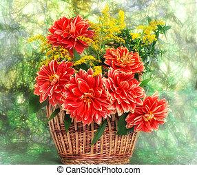 fleurs, georgina