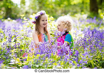 fleurs, gosses, Outils, jardin, jacinthe des bois
