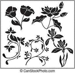 fleurs, graphiques