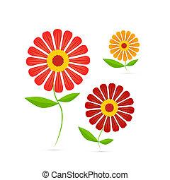 fleurs, illustration, vecteur, gerbera
