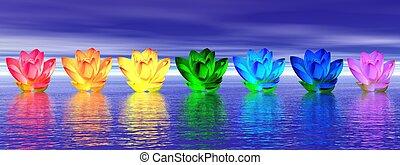 fleurs, lis, chakras, nuit